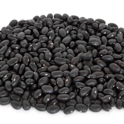 Black Beans - 400g Tin