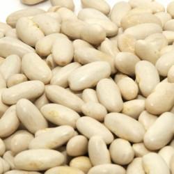Haricot Beans 3kg - Dried