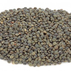 Lentils Speckled (De Puy) 1kg