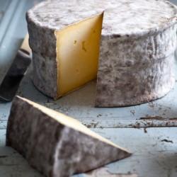 Gorwydd Caerphilly - Organic Cheese