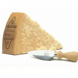 Parmesan - Grana Padano