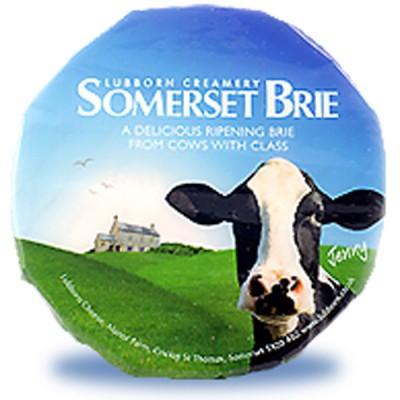 Somerset Brie 1kg