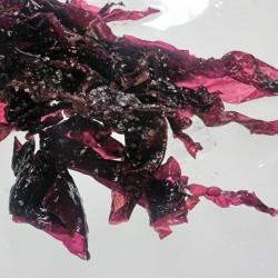 Dulse Purple Seaweed 50g