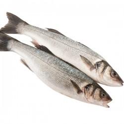 Sea Bass Wild 1lb-2lb