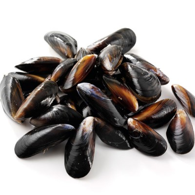Mussels - Live, Rope Grown, 5kg