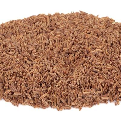 Caraway Seeds - 1ltr Tub