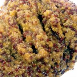 Grain Mustard 5kg